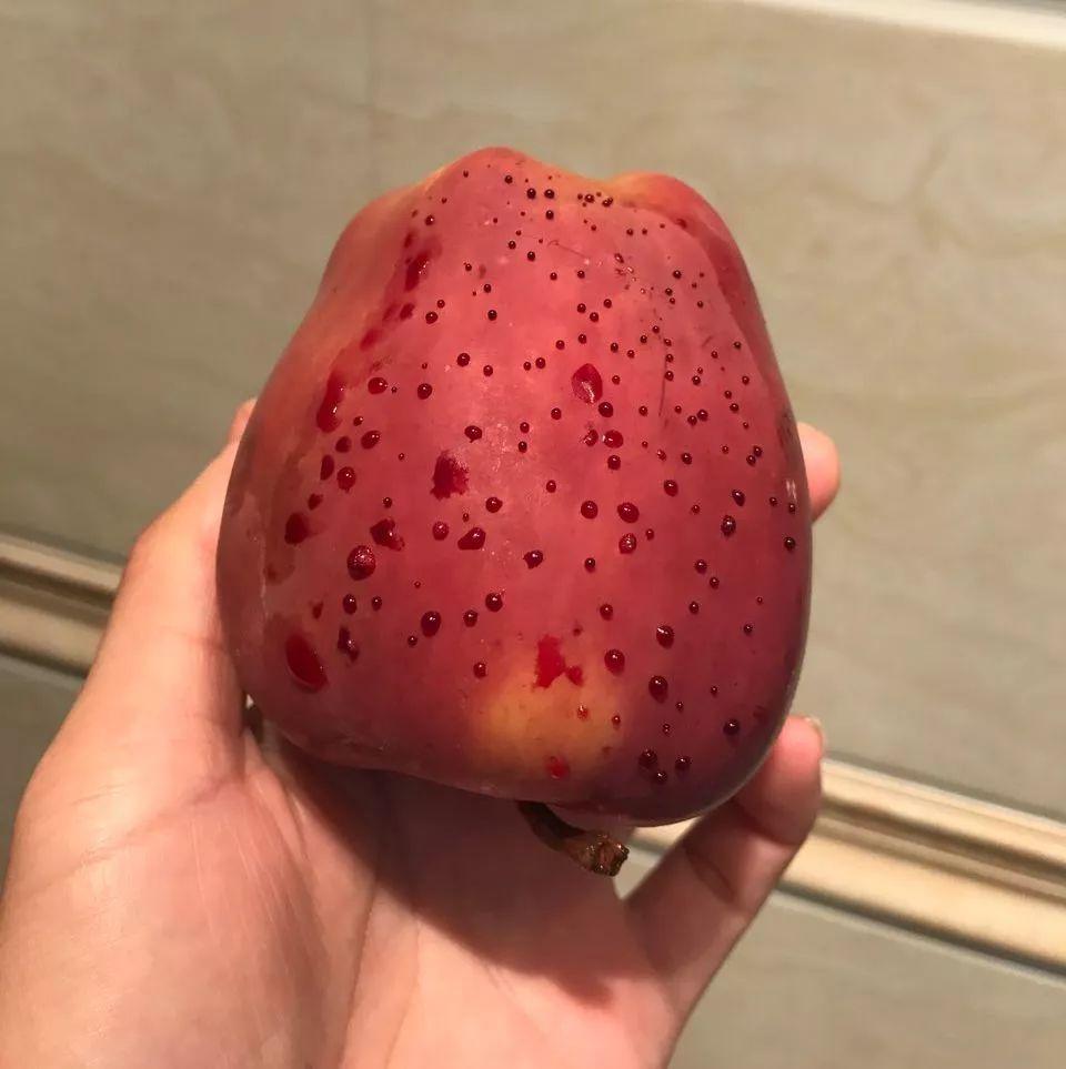 """苹果冒出""""血珠"""",原因竟然是这样......"""